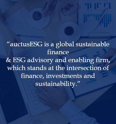 About auctusESG