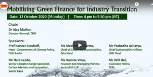 Mobilizing Green Finance for Industry Transition